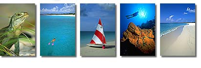 iguana, snorkel, sailboat, scuba diving, beaches